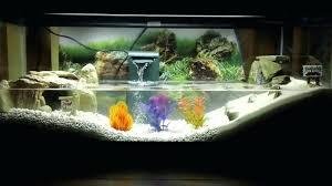 aquarium ideas crab tank turtle fish diy background
