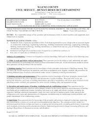School Custodian Resume Sample