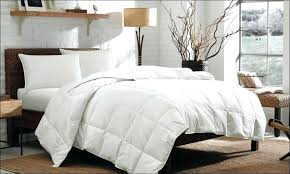 guy comforters