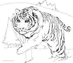 Daniel Tiger Coloring Pages Download Tiger Coloring Pages Daniel