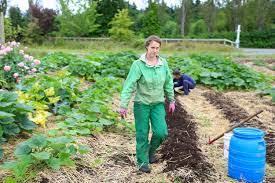 regenerative organic garden