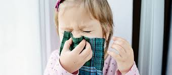 All About Toddler Allergies: Symptoms And Treatment - Care.com