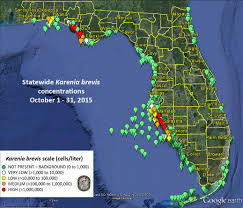 Red Tide In South Sarasota County Reversing Direction News