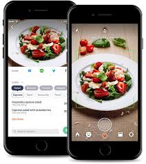 Calorie Chart App Calorie Mama Food Ai Food Image Recognition And Calorie
