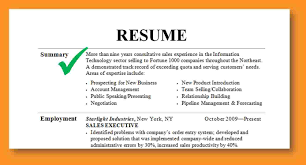Resume Summary Examples For Sales Examples Of Resumes