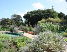 Walled Kitchen Garden Home Victorian Walled Kitchen Garden Restoration Of The