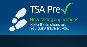which trusted traveler program is right