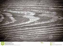 Legno Bianco Nero : Struttura in bianco e nero della venatura del legno fotografie