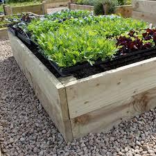raised vegetable bed using school raised garden beds