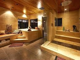luxury showers and bathtubs luxury bathroom with elevated bathtub and shower luxury showers and bathtubs luxury showers and bathtubs