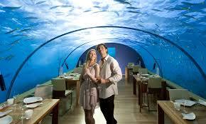 poseidon underwater hotel. Hotels And Resorts: Inspiring Landscape Underwater Hotel . Poseidon N
