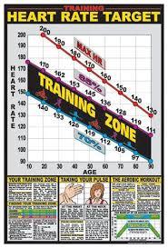 Cardio Training Zone Chart Cardio Training Zone Professional Fitness Wall Chart Poster