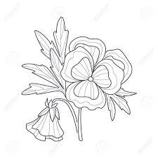 パンジー花帳手描きベクトル シンプルなスタイルのイラストを着色するため白黒図面