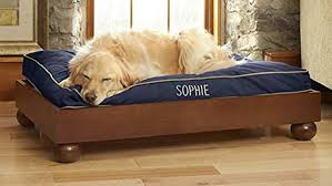 large pet beds for sale dog on8