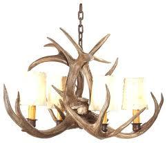 small antler chandelier small rustic chandeliers rustic lodge small deer antler chandelier small antler chandelier uk