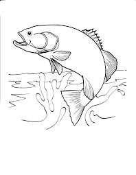 Small Picture Printable Fish Coloring Pages Free Printable Fish Coloring Pages