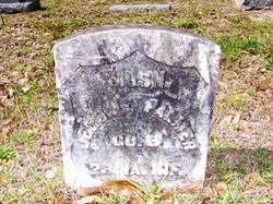 Jerome Palmer (1843-1926) - Find A Grave Memorial