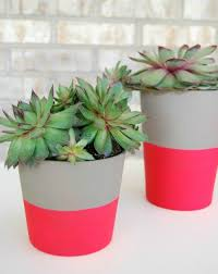 you guys i ve never been a huge fan of pink but hot pink i can get on board with that these pots were so fun and ridiculously easy to make