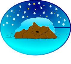 Výsledek obrázku pro spící medvěd