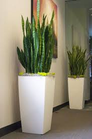 office planter. lechuza cubico planters office planter
