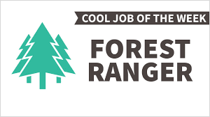 cool job of the week forest ranger cool job of the week forest ranger