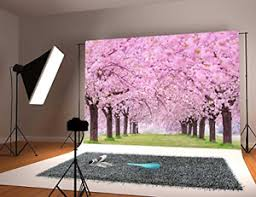 Cherry Blossom Backdrop Details About Cherry Blossoms Street Studio Photography Backdrop Flower Background Photo Best