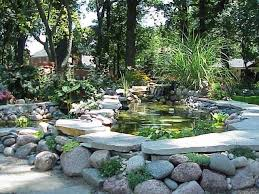 how to build an above ground pond in your backyard lovely 31 best koi images on