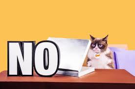 cat s out of the bag grumpy cat reveals her top ten pet peeves in pet peeve 2 social media