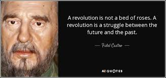 Fidel Castro Quotes 94 Amazing 244 QUOTES BY FIDEL CASTRO [PAGE 24] AZ Quotes