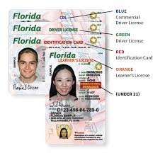 Educational institution transcript forms for the current. Florida S New Driver License And Id Card Florida Department Of Highway Safety And Motor Vehicles