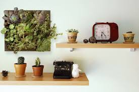 shelves with picture frame succulent planter