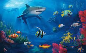 Underwater Desktop Wallpapers - Top ...