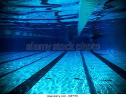 underwater view of two swimmers peting in adjacent lanes from far length of olympic size