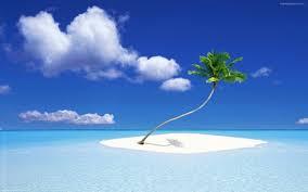 Beach 图片Samsung Galaxy Timedoll 高清 ...