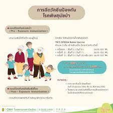 การฉีดวัคซีนป้องกันโรคพิษสุนัข... - Camillian Hospital Bangkok