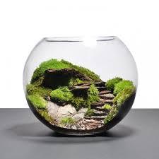 Stunning DIY Terrariums Design Ideas to Inspire You 345