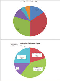 Census Pie Chart Color Online Program Demographics For Academic Year 2009