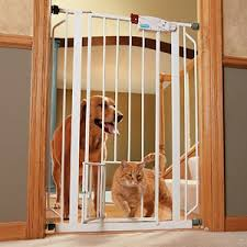 dog gate for stairs tall