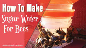 How To Make Sugar Water To Feed Honey Bees