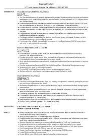 Performance Manager Resume Samples Velvet Jobs