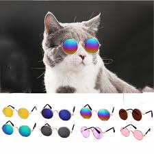 <b>Indian cat litter</b> fragrance No. 1 Hawaiian breeze filler bentonite 5 kg ...
