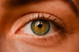 the science of hazel eyes