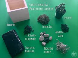 supplies for planting succulents in wood boxes with no drainage