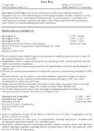 Manifest Clerk Sample Resume Mesmerizing Sample Investigator Resume Fraud Insurance Clerk Typist Field