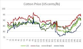 Cotton Prices Were Down Day On Day On 6 January With Indian
