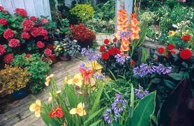 Backyard Flower Garden Designs Best Small Backyard Garden Design Inspiration Beautiful Red