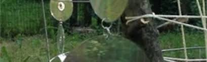 how to keep birds away from garden. Reusing Old CD\u0027s \u2013 How To Keep Birds Out Of The Garden Away From