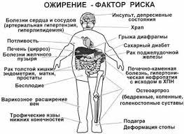 Дипломная работа Психологические особенности людей страдающих  У многих лиц с ожирением имеется нарушение функции инсулина и углеводного обмена а также обмена холестерина и триглицеридов