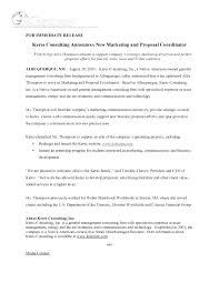 consultant proposal template it support services proposal template consulting business marketing