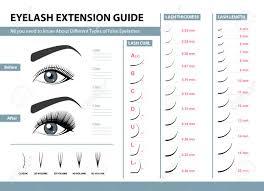 Fake Eyelash Size Chart Eyelash Extension Guide